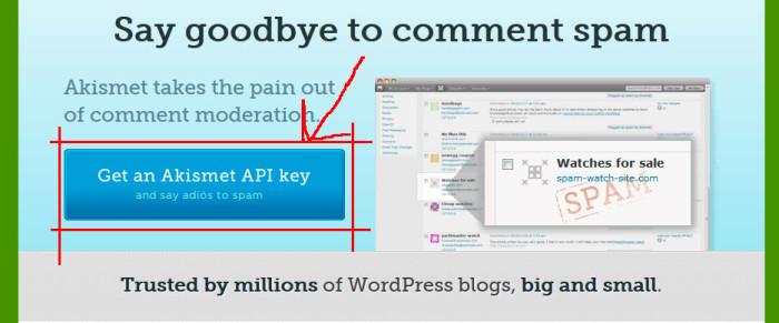 Get an Akismet API key - Спам в комментариях WordPress или как защитить свой сайт от спама?