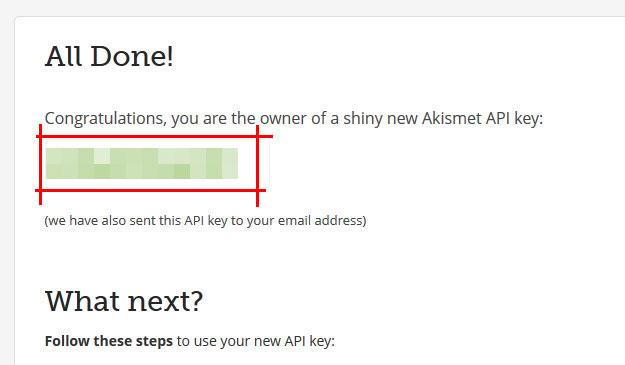 Akismet API Key - Спам в комментариях WordPress или как защитить свой сайт от спама?